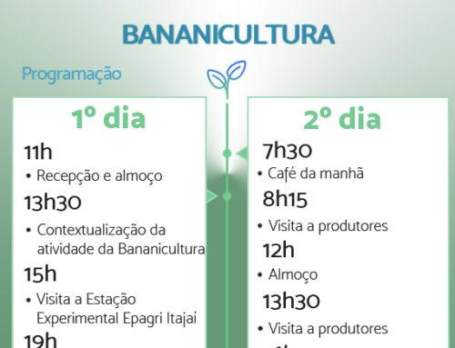 NITA –  missão técnica na cadeia da banana  nos dias 25 e 26 de abril- Inscreva-se!!!