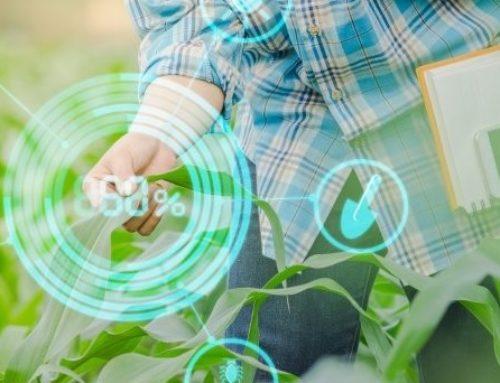 Tecnologia da informação leva nova revolução à agricultura