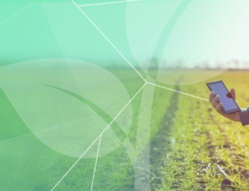 ManejeBem – Rede Social para Agricultores