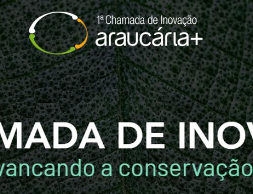 Araucária+ lança Chamada de Inovação nacional