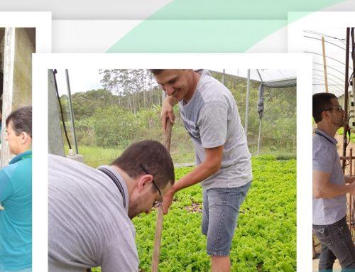 Epagri e agrotechlink realizam Tarde de Campo