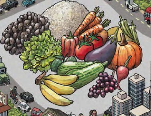 Construção de diretrizes públicas e empresariais para a inclusão da agricultura familiar