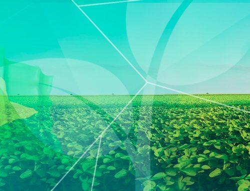PERSPECTIVAS PARA O AGRONEGÓCIO EM 2019